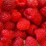 afvallen met fruit frambozen